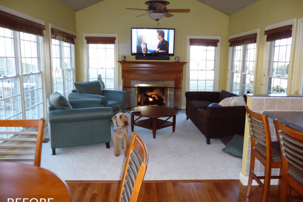 Dog standing beside the sofa