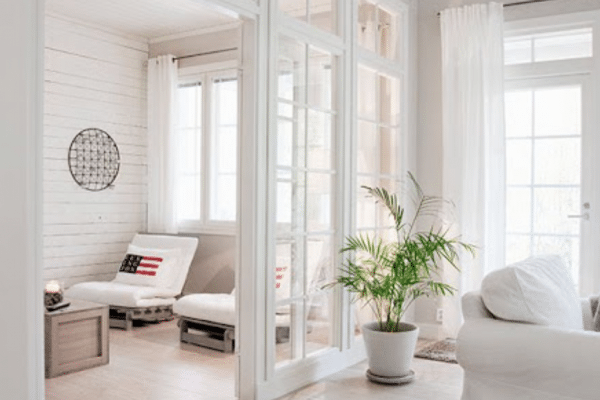 Green leafed plant with white pot in room
