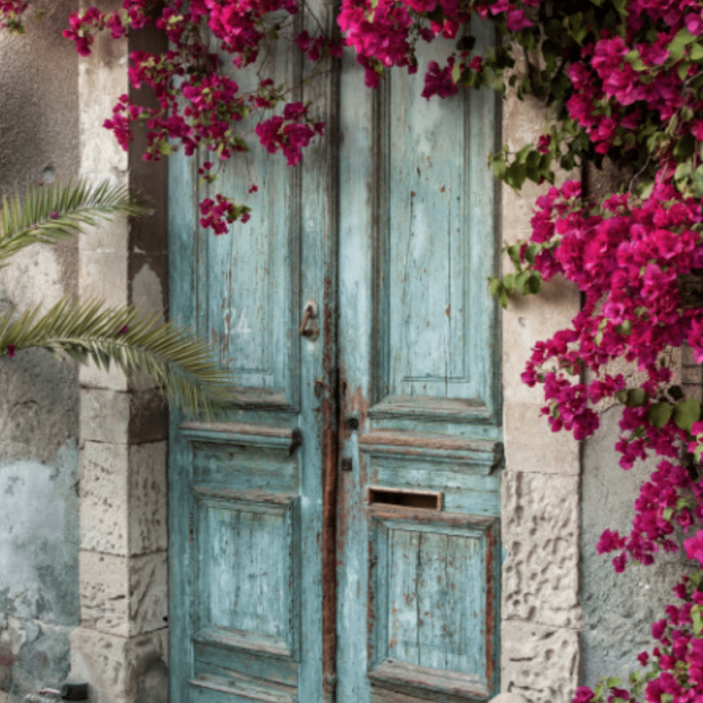 Closed door surrounded with pink flowers
