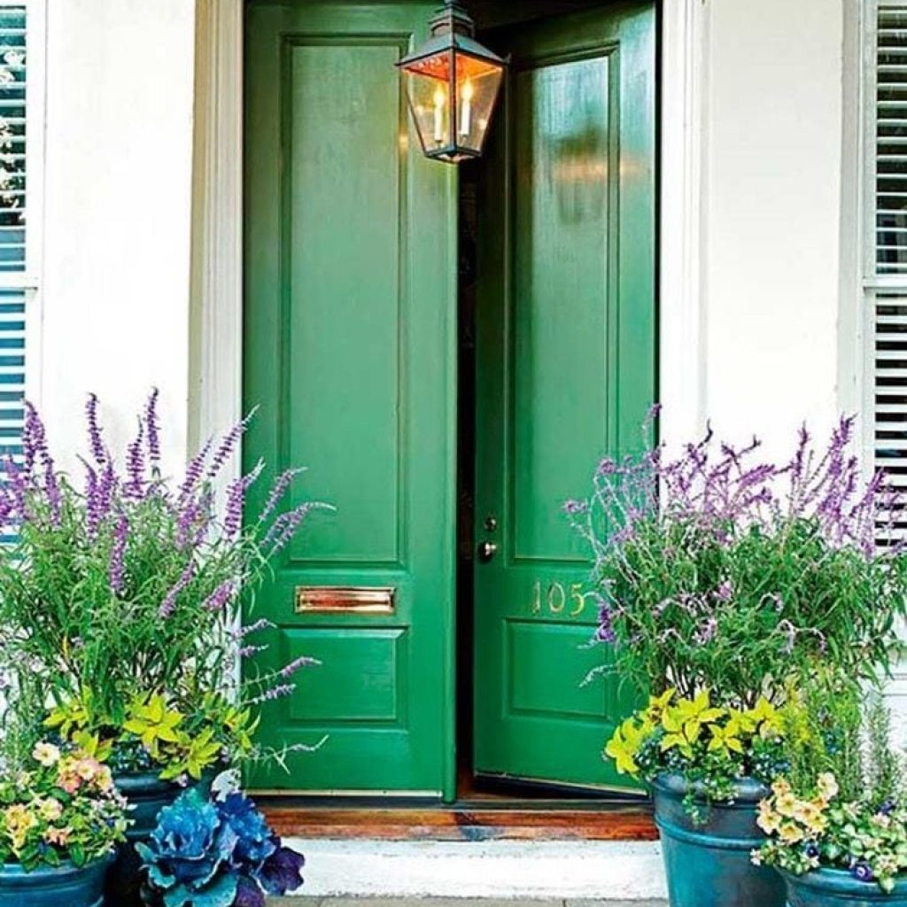 Green wooden door between potted flowers