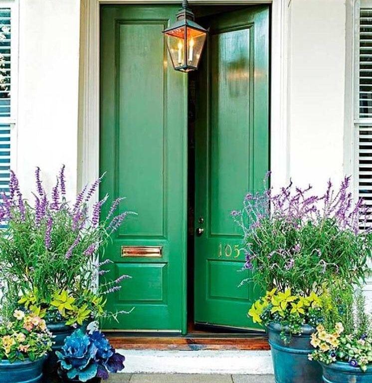 Green wooden door between potted flowers
