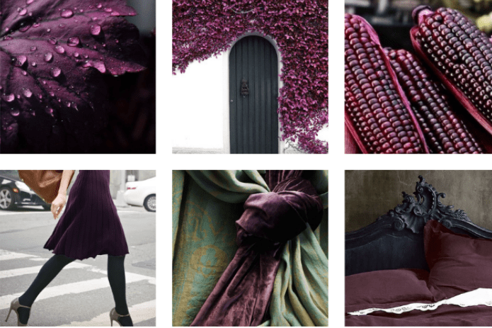 Aubergine Mood Board